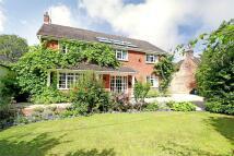 4 bedroom Detached house in Bramdean, Hampshire