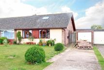 Semi-Detached Bungalow for sale in Alresford, Hampshire