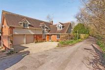 Central Alresford Detached house for sale