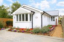 Detached Bungalow in Alresford, Hampshire
