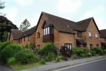 Alresford Flat to rent