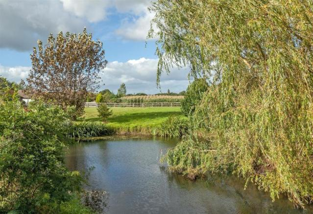 Pond Area 1.jpg