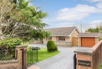 4 bed Detached Bungalow for sale in Dyffryn Road...