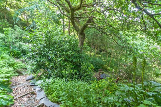 Woodland Garden 1.jpg