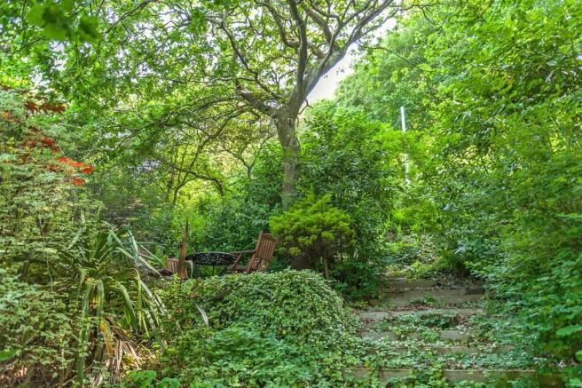Woodland Garden 3.jpg