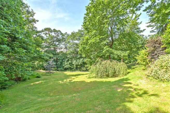 Woodland Garden 5.jpg