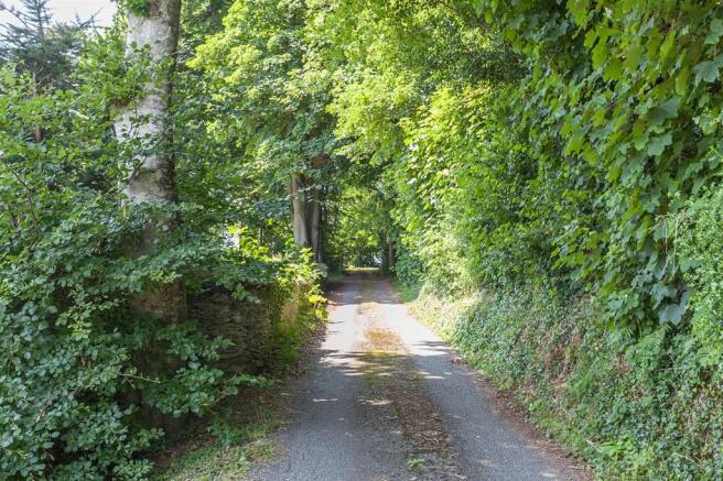 Driveway 5.jpg