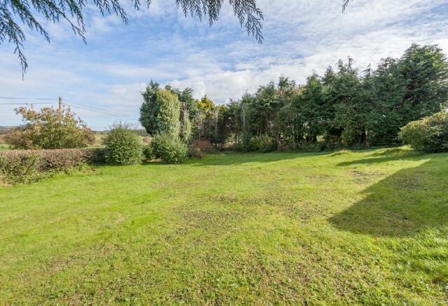 Garden 3 (2).jpg