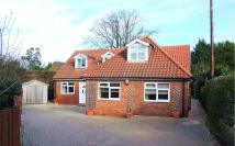 Bungalow for sale in Hayes Lane, Kenley, CR8