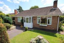 2 bed Detached Bungalow for sale in Hall Road, Uttoxeter...