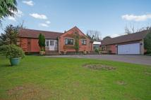 4 bed Bungalow for sale in &  Roman Hill Business...