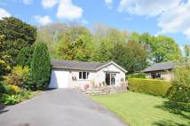 3 bed Bungalow for sale in Winterbourne Steepleton...