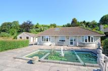 Bungalow for sale in Grove Hill, Osmington...