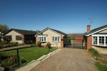 3 bed Detached Bungalow for sale in Acorn Ridge, Shirebrook