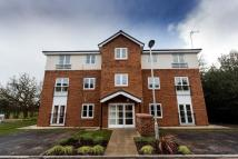 1 bed new Apartment in London Road, Stapeley...