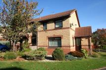 3 bed End of Terrace house for sale in 22 Speedwell Avenue...