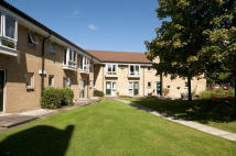 Sheltered Housing in Maple Court, Ash Terrace...