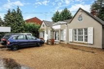 property to rent in New Road, Ascot, Berkshire, SL5