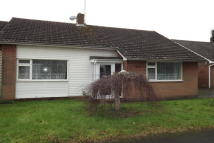 Detached Bungalow to rent in Dene Close, Ringwood...