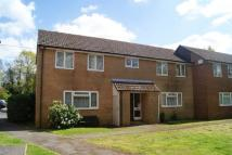 Willow Drive Flat to rent