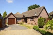 Detached Bungalow for sale in Burwood Place...