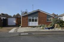 3 bed Detached Bungalow for sale in Saxon Close, Felixstowe