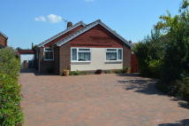 Detached Bungalow in Eaton Close...