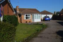 Detached Bungalow for sale in Norman Close, Felixstowe