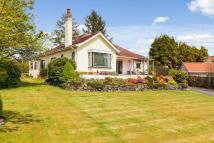 Detached house for sale in Millbank, Florence Drive...