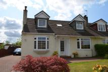 Semi-Detached Bungalow to rent in 5 Larchfield Road...