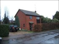 Detached house to rent in Mill Lane, Acle, NR13