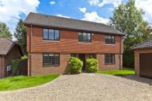 Detached house to rent in Berrington Drive...