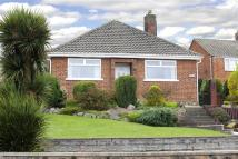 3 bed Bungalow for sale in Lynley, Bagillt Road...