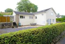 4 bed Detached house for sale in The Beeches, Holywell