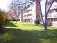 Flat to rent in Seychelle Court Foxgrove...