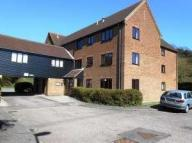 1 bed Studio flat in Gilman Road, Norwich, NR3