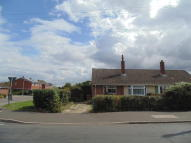 Semi-Detached Bungalow to rent in MANOR ROAD...