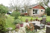 Detached Bungalow to rent in Shootersway, Berkhamsted