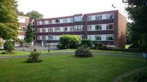 Apartment to rent in DAVENPORT ROAD, Coventry...