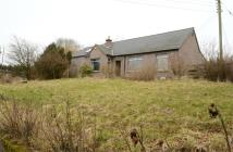 Detached Bungalow in East High Street...