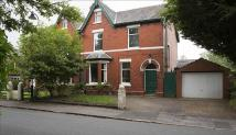 semi detached house in Mornington Road...