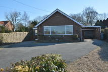 Detached Bungalow for sale in Yoxford, Suffolk