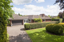 4 Bordesley Court Detached Bungalow for sale