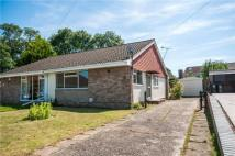 2 bed Semi-Detached Bungalow in Faesten Way...