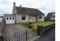 Bungalow to rent in Broomside Place