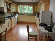 Nailcote Avenue - Room 1 House Share