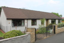 Detached Bungalow for sale in Clydesdale Avenue...