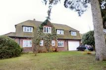 Banstead house to rent