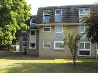 2 bed Flat to rent in Sycamore Close...