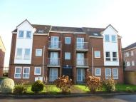 1 bedroom Flat to rent in Whitefield Road...
